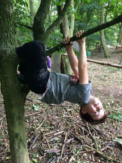 9 year old boy with brown hair and grey t-shirt hanging upside down from tree branch